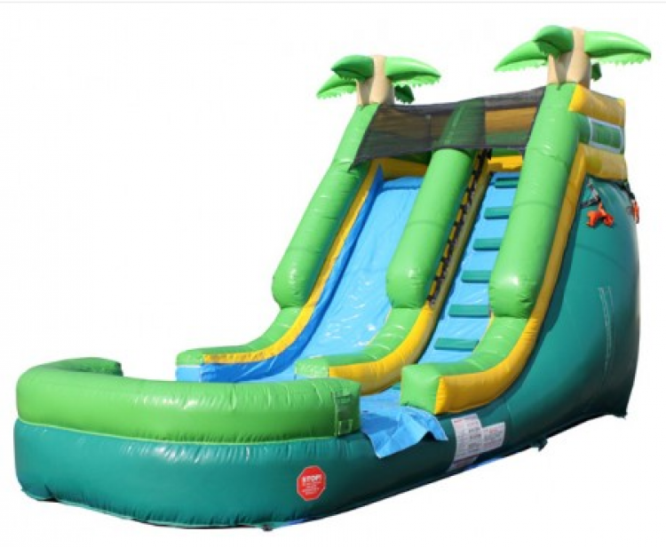 13 Foot DRY USE ONLY Palm Tree Slide