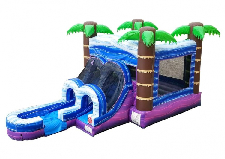 WET OR DRY Tropical Bounce House / Slide Combo